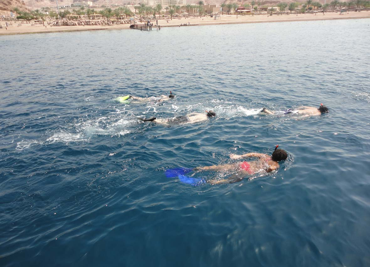 Snorkeling,Glass bottom Boat Aqaba, 2014